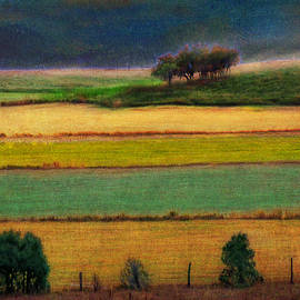 R christopher Vest - Gold And Green Pastures