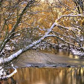 Michael Mazaika - Gold in the Creek B1 - Owens Creek Near Loys Station Covered Bridge - Winter Frederick County MD