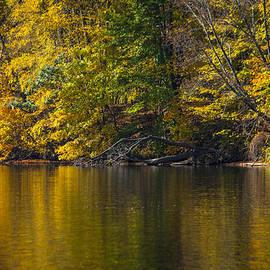 Karol  Livote - Golden Autumn