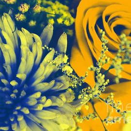 Dora Sofia Caputo Photographic Art and Design - Golden Blossoms Pop Art