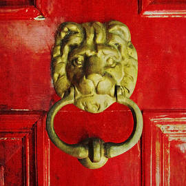 Brooke T Ryan - Golden Brass Lion on Red Door