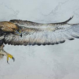 Alan Pickersgill - Golden Eagle