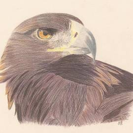 Sheila Byers - Golden Eagle Study