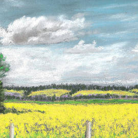 Fiona Graham - Golden Fields of Alberta
