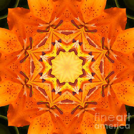 Barbara Griffin - Golden Flower - Abstract - Kaleidoscope2
