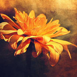 Maria Angelica Maira - Golden Flower