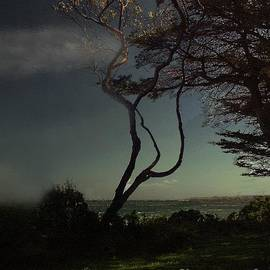 RC deWinter - Golden Goodnight