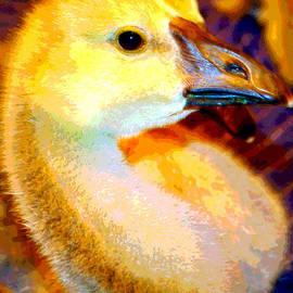 Lisa Holland-Gillem - Golden Goslings