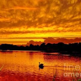 Katy Mei - Golden Lake