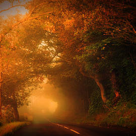 Jenny Rainbow - Golden Mist on the Scottish Road
