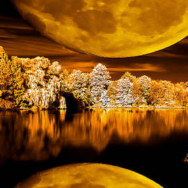 David Stine - Golden Moon Pond
