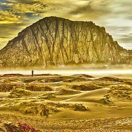 Camille Lopez - Golden Morro Bay