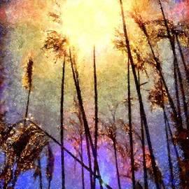 Janine Riley - Golden Sun Rays on Beach Grass