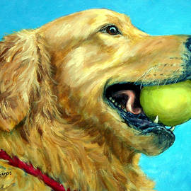Dottie Dracos - Golden Retriever Profile with Tennis Ball