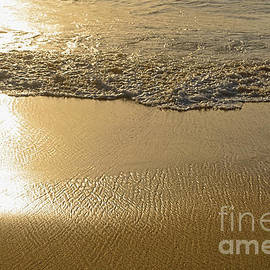 Kaye Menner - Golden Seashore by Kaye Menner