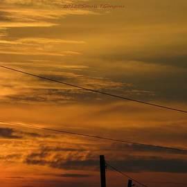Sonali Gangane - Golden Sky