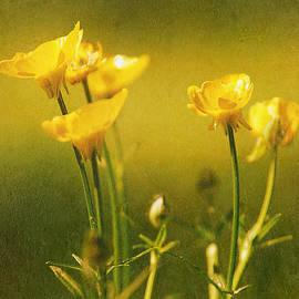 Rene Crystal - Golden Spring