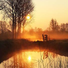 LHJB Photography - Golden sunrise