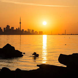 Georgia Mizuleva - Golden Toronto Skyline at Sunrise