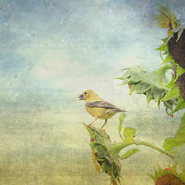 Kathy Rinker - Goldfinch in the Garden
