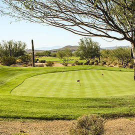 Fred Larson - Golfing Arizona