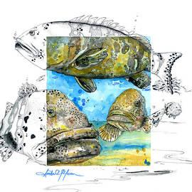 Amber M  Moran - Goliath Grouper