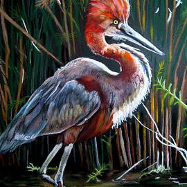 Mike Benton - Goliath Heron
