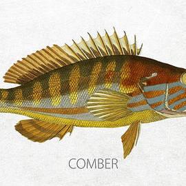 Comber