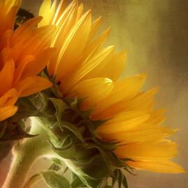 John Rivera - Good Morning Sunshine