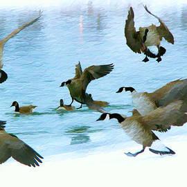 Kathy Bassett - Goose Hop
