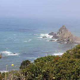 Christiane Schulze - Gorgeous Mendocino Coast