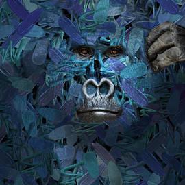 Aimelle - Gorilla - Find Me Series