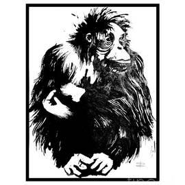 Paul Davenport - Gorilla ina box