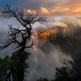 Adam Schallau - Grand Canyon from Cape Royal