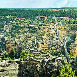 Bob and Nadine Johnston - Grand Canyon from Hermit Road