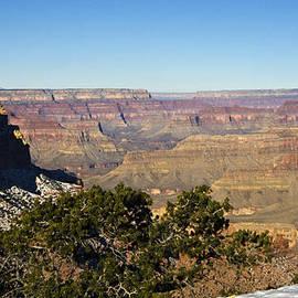 Bob Bailey - Grand Canyon Morning