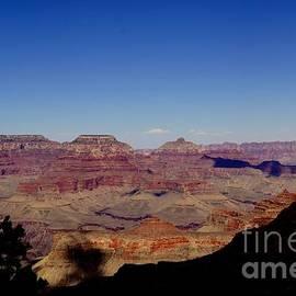 Trish Hebendahl - Grand Canyon South Rim 12