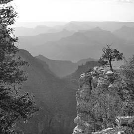 Gregory Ballos - Grand Canyon Splendor