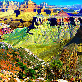 Bob and Nadine Johnston - Grand Canyon View from Kaibab Trail