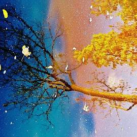 Daniel Thompson - Grand Reflections # 1
