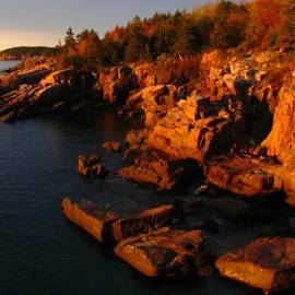 Juergen Roth - Granite Coast Landscape Acadia NP