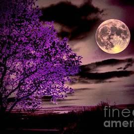Robert McCubbin - Grape Leaves
