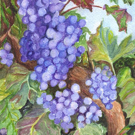Carol Wisniewski - Grapes For The Harvest