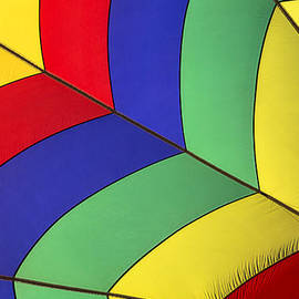 Garry Gay - Graphic hot air balloon detail