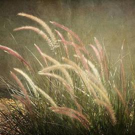 Lucinda Walter - Grasses in Beauty