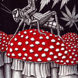 Vitaliy Gonikman - Grasshopper Rider