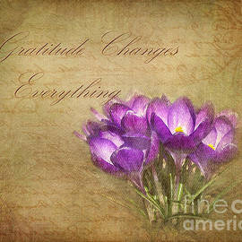 Kathi Mirto - Gratitude Changes Everything