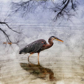 EricaMaxine  Price - Great Blue Heron Fishing - Featured in Cards for all Occasions Group