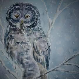 Ellen Levinson - Great Gray Owl Dark of Night