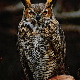 Ernie Echols - Great Horned Owl Digital Art